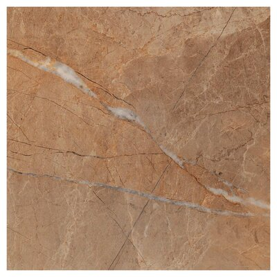 Natura Polished 23.4 x 23.4 Porcelain Field Tile in Gray
