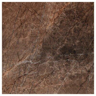 Natura Polished 23.4 x 23.4 Porcelain Field Tile in Brown