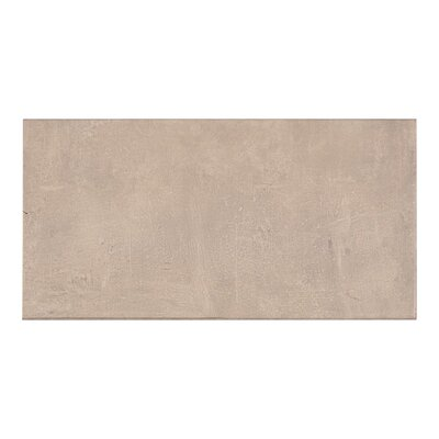Concrete 11.7 x 23.21 Porcelain Field Tile in Gray