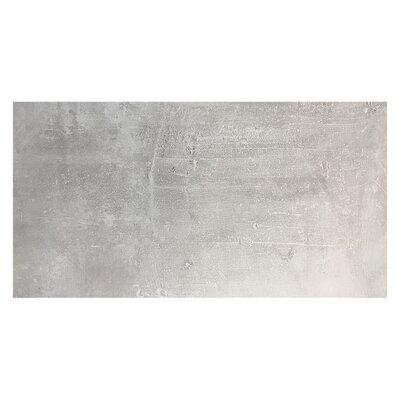 Concrete 15.6 x 31.2 Porcelain Field Tile in Gray