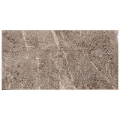 Tundra Polished Stone Look 23.4 x 46.8 Porcelain Field Tile in Gray