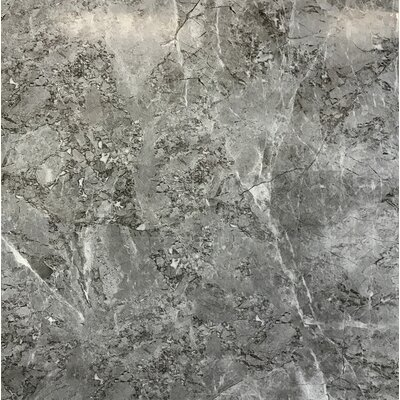 Tundra Polished Stone Look 23.4 x 23.4 Porcelain Field Tile in Gray