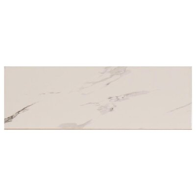 Carrara Polished 9.75 x 29.25 Ceramic Field Tile in White