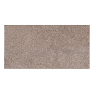 Cement Look 11.7 x 23.4 Porcelain Field Tile in Antracite