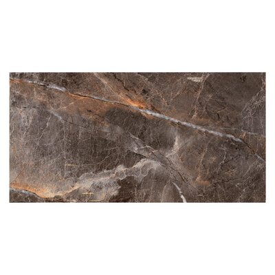 Natura Polished 23.4 x 46.8 Porcelain Field Tile in Anthracite