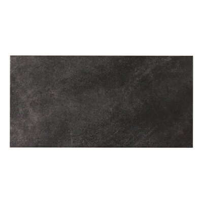 Concrete 11.5 x 23.2 Porcelain Field Tile in Dark Gray