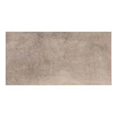 Golden 11.7 x 23.4 Porcelain Field Tile in Gray