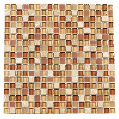 Paragon 12 x 12 Glass & Stone Mosaic Tile in Nutmeg Mixed