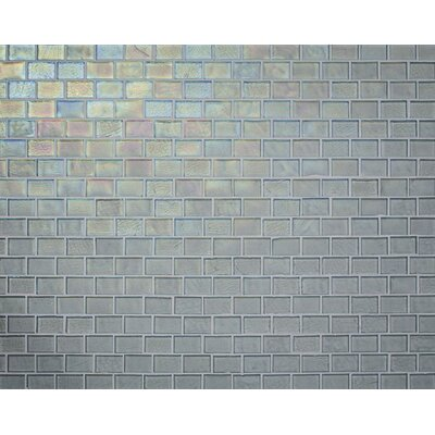 Studio 0.88 x 1.38 Glass Mosaic Tile in Clear