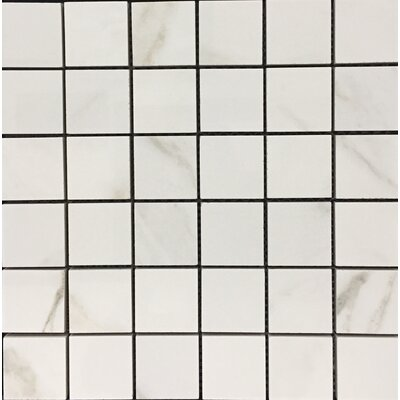 Hex Alpine 12 x 12 Porcelain Mosaic Tile in White
