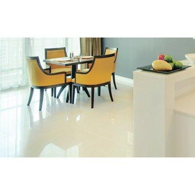Alpine 24  x 24 Porcelain Floor Tile in Off-White