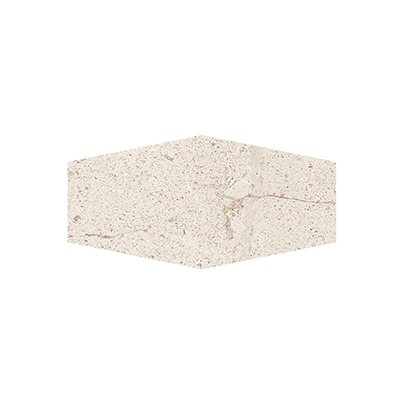 Costal Forest 9.5 x 19.25 Porcelain/Stone Field Tile in Beige