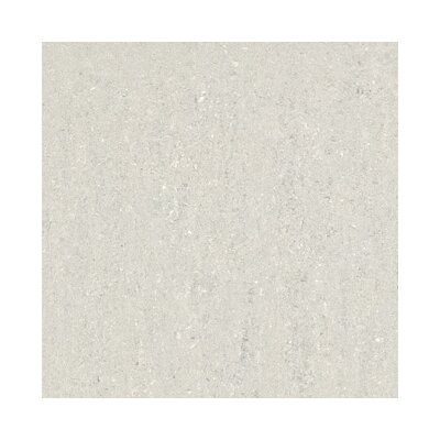 Concreto Polished 24 x 24in Porcelain Title in Grey