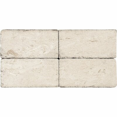 3 x 6 Natural Stone Subway Tile in Fossil Stone