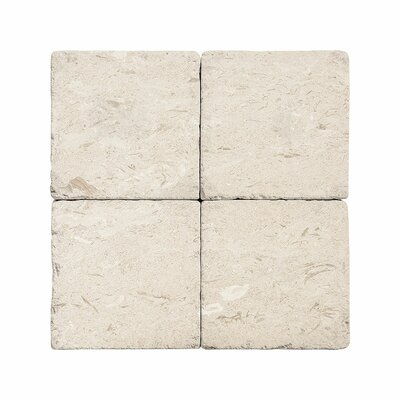 4 x 4 Limestone Field Tile in Beige