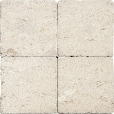 Stone Field 6 x 6  Tile in Beige