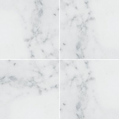 Verona Marble 3 x 6 Marble Field Tile in Bianco Polished