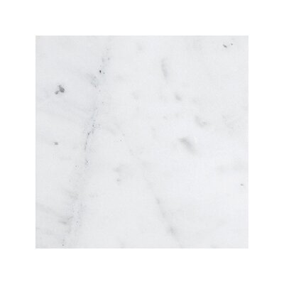Verona Marble 18 x 18 Stone Tile in Bianco Honed