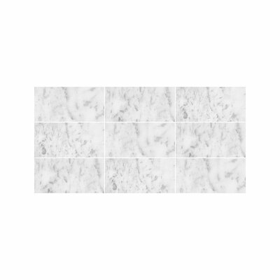 Verona Marble 3 x 6 Marble Field Tile in Bianco Honed