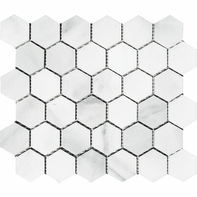 Verona Hexagon 2 x 2 Stone Mosaic Tile in Bianco Honed