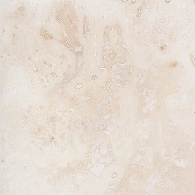 Pueblo 18 x 18 Travertine Field Tile in Ivory Honed