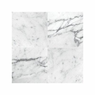Carrara 4 x 4 Marble Field in Honed White