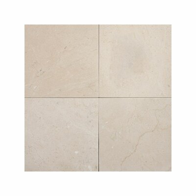 Crema Marfil 4 x 4 Stone Tile Honed