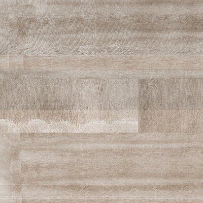 Absolute 12 x 24 Porcelain Field Tile in Cedar