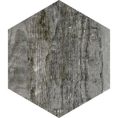 Docklight Hexagon 9.5 x 11 Porcelain Wood Tile in Wind