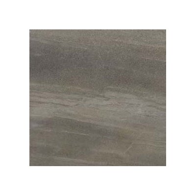 Core 13 x 13 Porcelain Field Tile in Cameleon