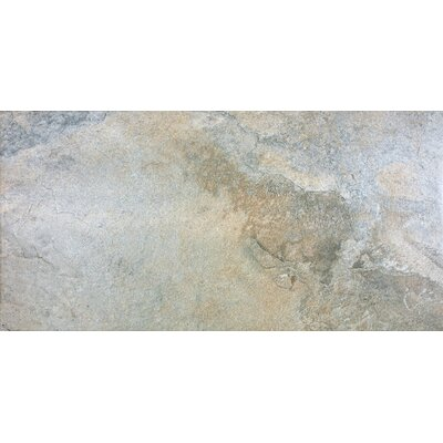 Bay 12 x 12 Porcelain Tile in Harvest