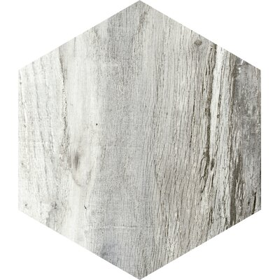 Docklight Hexagon 9.5 x 11 Porcelain Wood Tile in Magpie