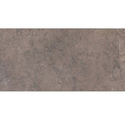 12 x 24 Limestone Field Tile in Gray