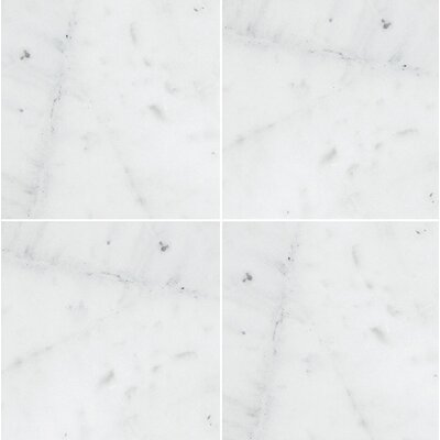 Verona Marble 12 x 12 Natural Stone Field Tile in Bianco Honed