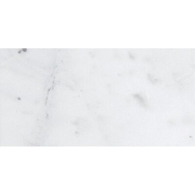 Verona Marble 12 x 24 Natural Stone Field Tile in Bianco Honed