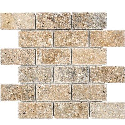 Philadelphia Mosaic 2 x 4 Stone Mosaic Tile Tumbled