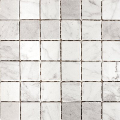 Carrara 2 x 2 Stone Mosaic Tile in White Tumbled