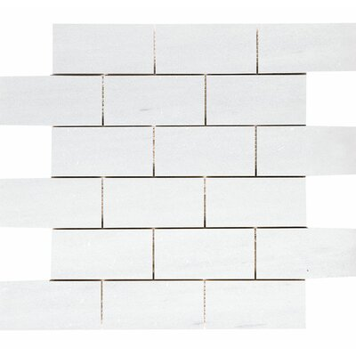 Naples Marble 2 x 4 Stone Mosaic Tile in White Honed