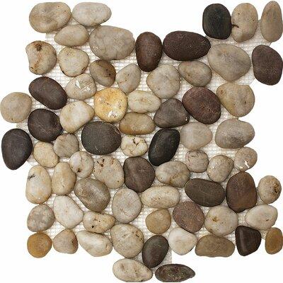 Stone Pebble 12 x 12 Tile in Wine
