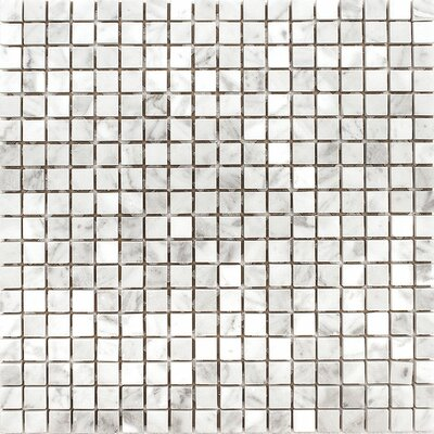 Carrara 0.625 x 0.625 Stone Mosaic Tile in White Polished