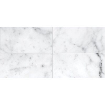 Carrara 3 x 6 Stone Tile in White Polished