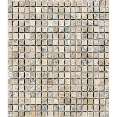 Tumbled 0.63 x 0.63 Stone Mosaic Tile in Antico