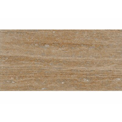 Vein Cut 12 x 24 Travertine Field Tile in Walnut Honed