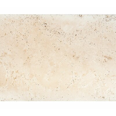 Straight Edge 16 x 24 Travertine Field Tile in Honed Ivory