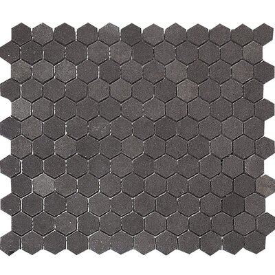 Lava Hexagon 1 x 1 Stone Mosaic Tile in Black Honed