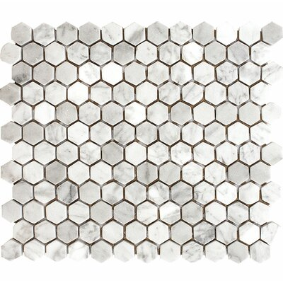 Carrara Hexagon 1 x 1 Stone Mosaic Tile in White Tumbled