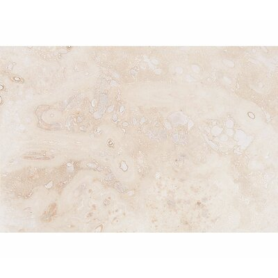 Classic 16 x 24 Travertine Field Tile in Honed Ivory