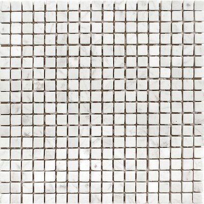 Carrara 0.625 x 0.625 Stone Mosaic Tile in White Tumbled