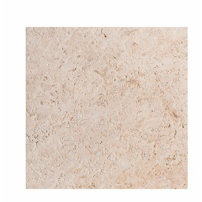 ShellStone Tile 18 x 18 Field Tile in Brushed
