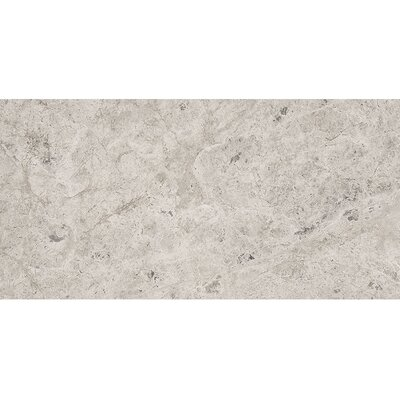 Marble 12 x 24 Stone Tile in Antique Gray Polished